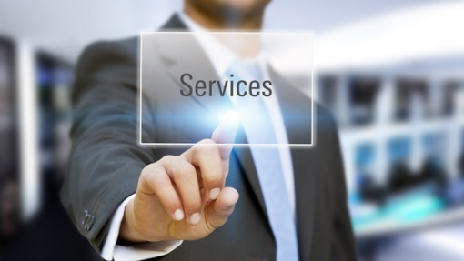 Provision of Ancillary and labor services